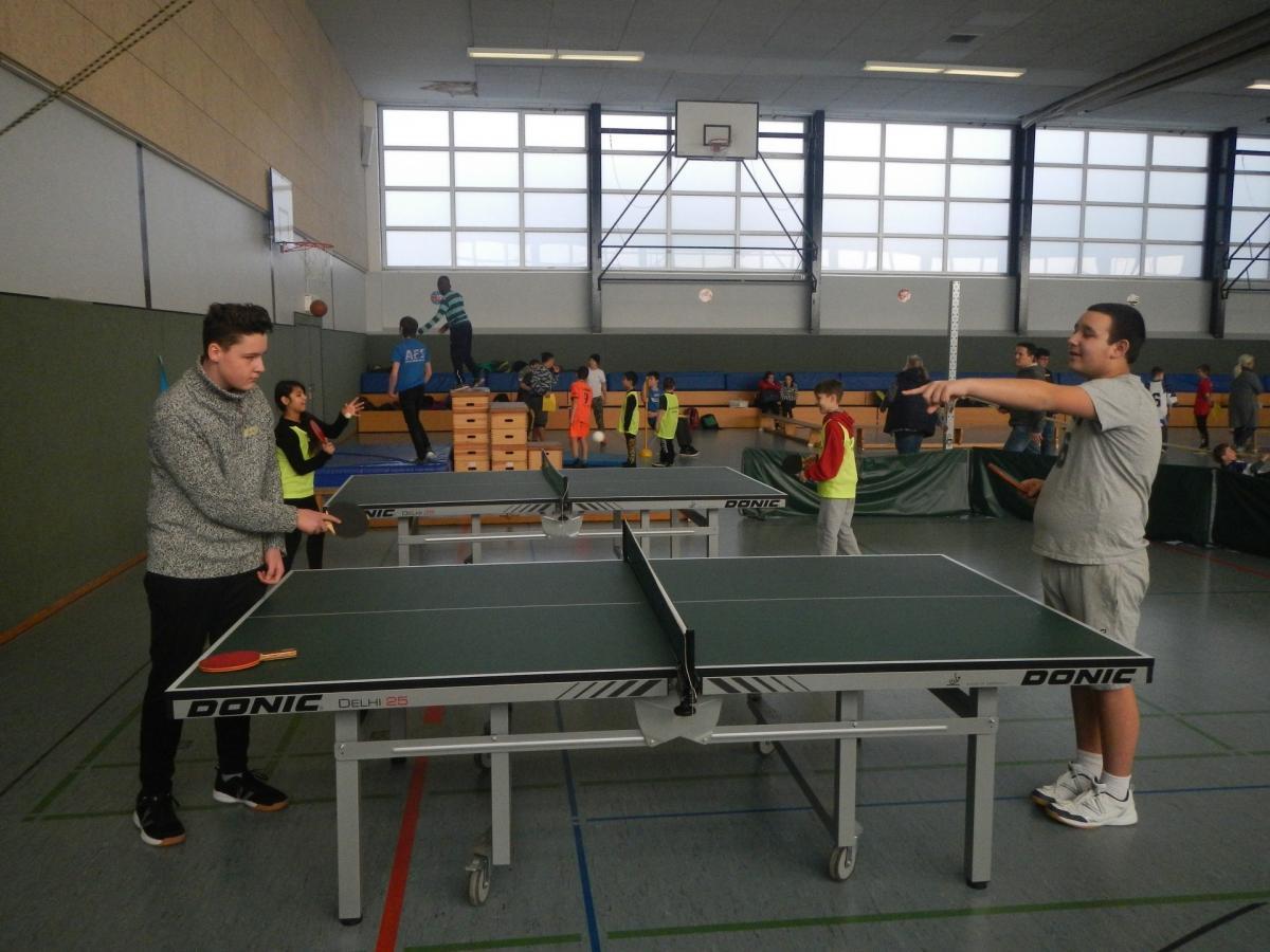 sportfest-00014